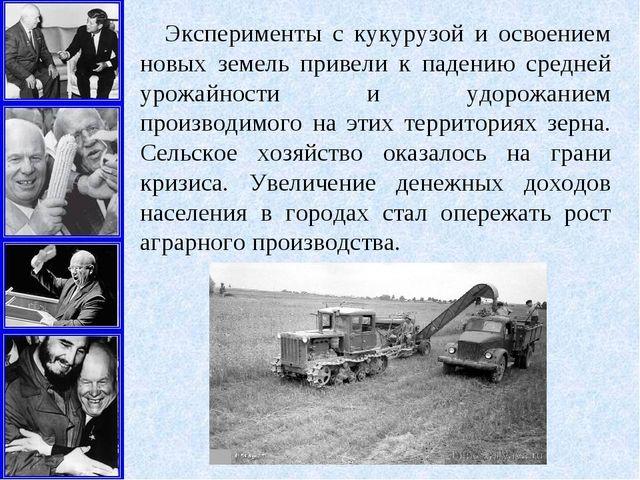 Эксперименты с кукурузой и освоением новых земель привели к падению средней у...