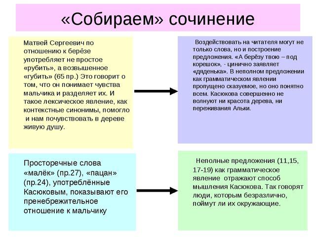 «Собираем» сочинение Матвей Сергеевич по отношению к берёзе употребляет не пр...
