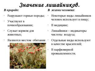 Значение лишайников. В природе: Разрушают горные породы; Участвуют в почвообр