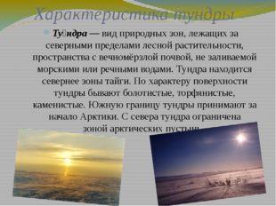 Характеристика тундры Ту́ндра— видприродных зон, лежащих за северными преде