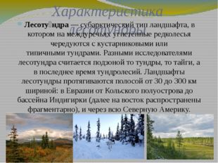 Характеристика лесотундры Лесоту́ндра— субарктический типландшафта, в котор