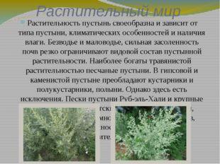 Растительный мир Растительность пустынь своеобразна и зависит от типа пустыни
