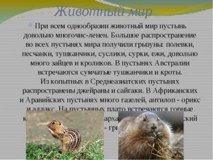 Животный мир При всем однообразии животный мир пустынь довольно многочис-лене