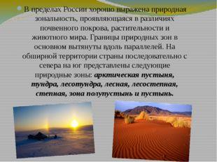 В пределах России хорошо выражена природная зональность, проявляющаяся в разл