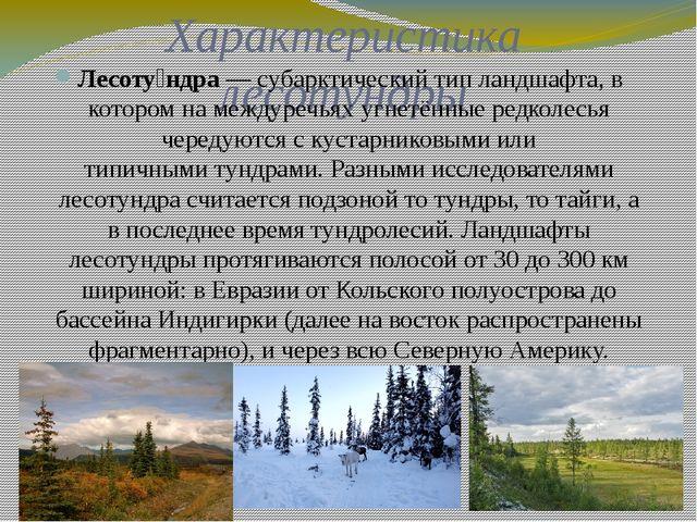 Характеристика лесотундры Лесоту́ндра— субарктический типландшафта, в котор...
