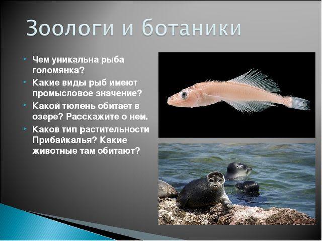 Чем уникальна рыба голомянка? Какие виды рыб имеют промысловое значение? Како...