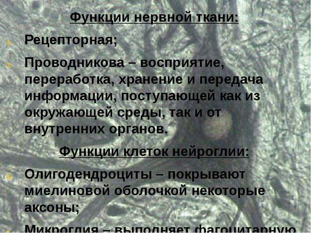 Функции нервной ткани: Рецепторная; Проводникова – восприятие, переработка, х...