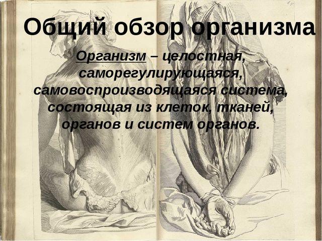 Организм – целостная, саморегулирующаяся, самовоспроизводящаяся система, сост...
