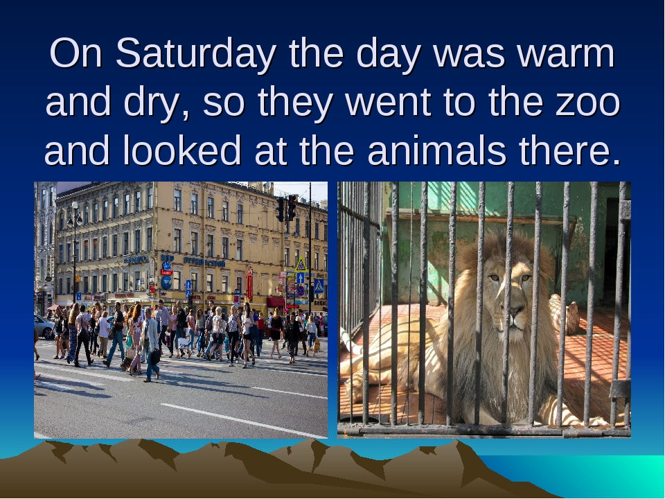 On Saturday the day was warm and dry, so they went to the zoo and looked at t...