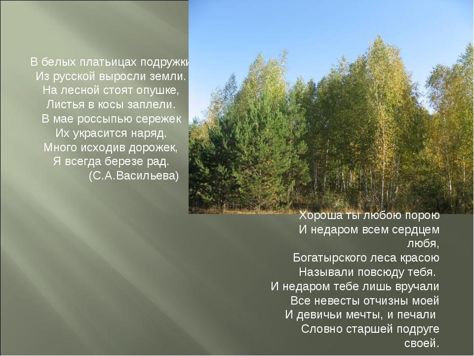 В белых платьицах подружки Из русской выросли земли. На лесной стоят опушке,...