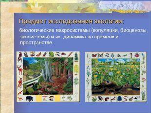 Предмет исследования экологии: биологические макросистемы (популяции, биоцено