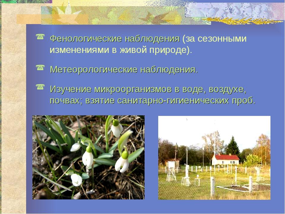 Фенологические наблюдения (за сезонными изменениями в живой природе). Метеоро...