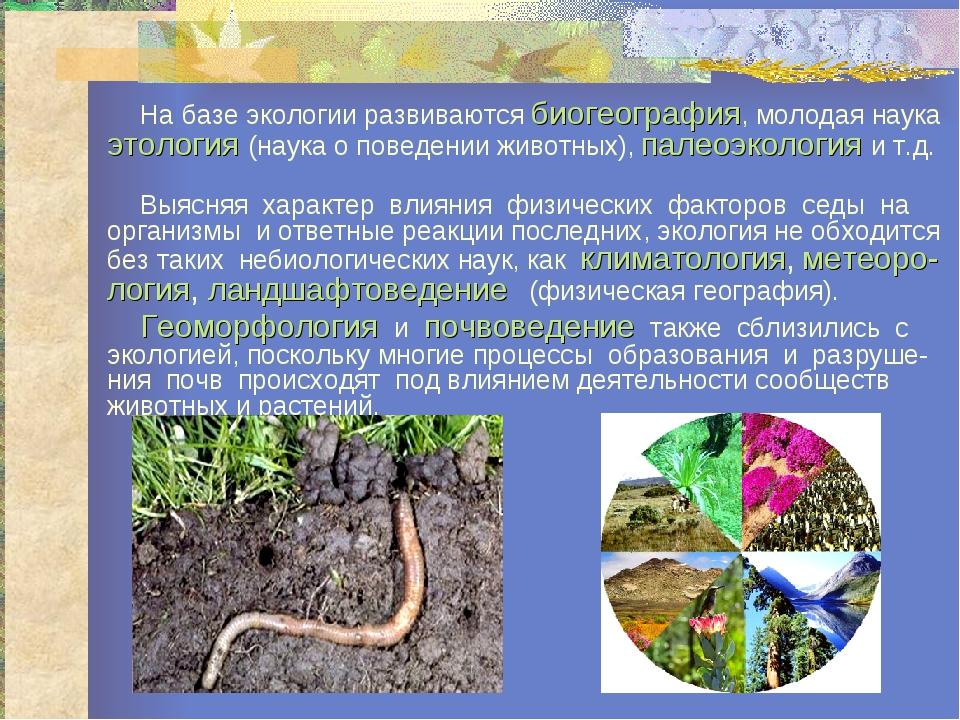 На базе экологии развиваются биогеография, молодая наука этология (наука о п...