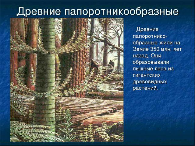 ГБОУ СОШ №1020 Древние папоротникообразные Древние папоротнико-образные жили...