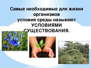 Самые необходимые для жизни организмов условия среды называют УСЛОВИЯМИ СУЩЕС