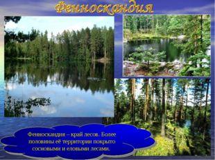 Фенноскандия – край лесов. Более половины её территории покрыто сосновыми и е