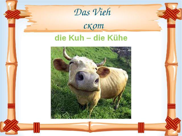 Das Vieh скот die Kuh – die Kühe