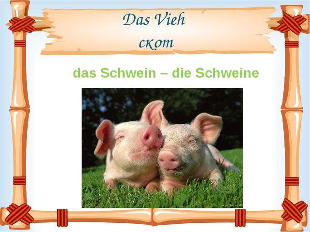 Das Vieh скот das Schwein – die Schweine