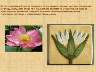 Лотос – священный цветок древних египтян, символ красоты, чистоты, стремления