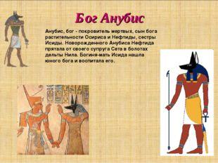 Бог Анубис Анубис, бог - покровитель мертвых, сын бога растительности Осириса