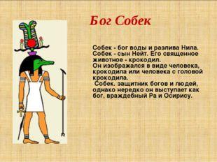 Бог Собек Собек - бог воды и разлива Нила. Собек - сын Нейт. Его священное жи