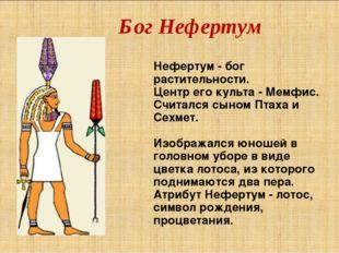 Бог Нефертум Нефертум - бог растительности. Центр его культа - Мемфис. Считал
