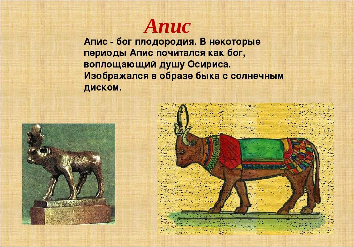 Апис Апис - бог плодородия. В некоторые периоды Апис почитался как бог, вопло...