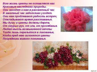 Всю жизнь цветы не оставляют нас Красивые наследники природы. Они заходят к н