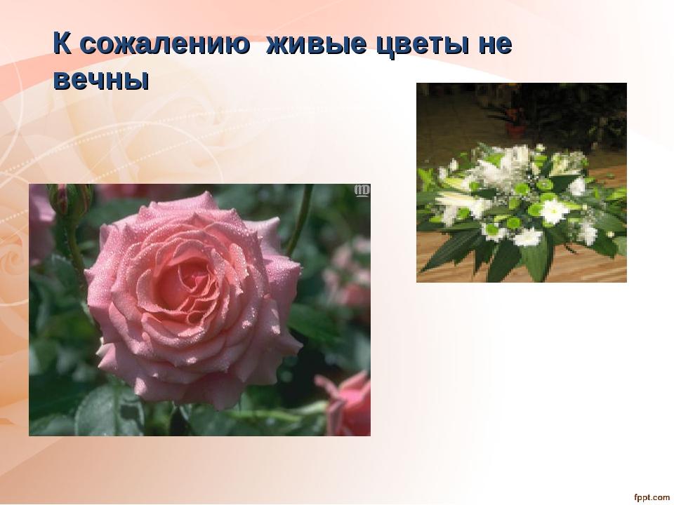 К сожалению живые цветы не вечны