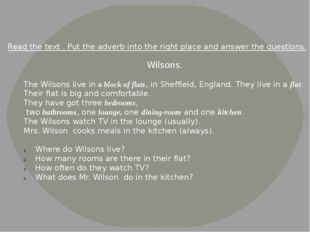 Wilsons. The Wilsons live in a block of flats, in Sheffield, England. They li