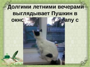 Долгими летними вечерами выглядывает Пушкин в окно, дожидается папу с работы.