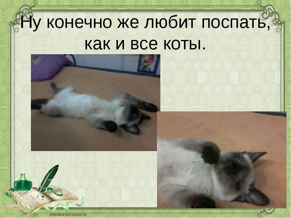 Ну конечно же любит поспать, как и все коты.