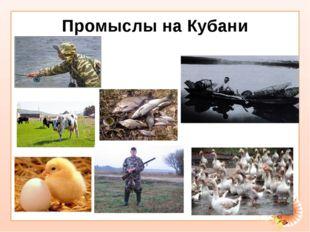 Промыслы на Кубани