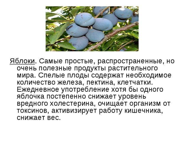 Яблоки. Самые простые, распространенные, но очень полезные продукты раститель...