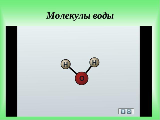 Молекулы воды