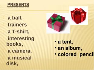 a ball, trainers a T-shirt, interesting books, a camera, a musical disk, a t