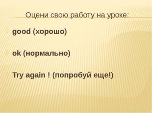 Оцени свою работу на уроке: good (хорошо) ok (нормально) Try again ! (попробу