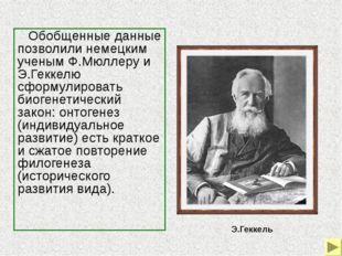 Биогенетический закон был развит и уточнен российским ученым А.Н.Северцовым,