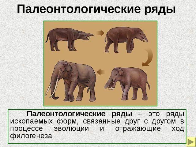 Владимир Онуфриевич Ковалевский (1842-1883) - известный русский зоолог, осно...