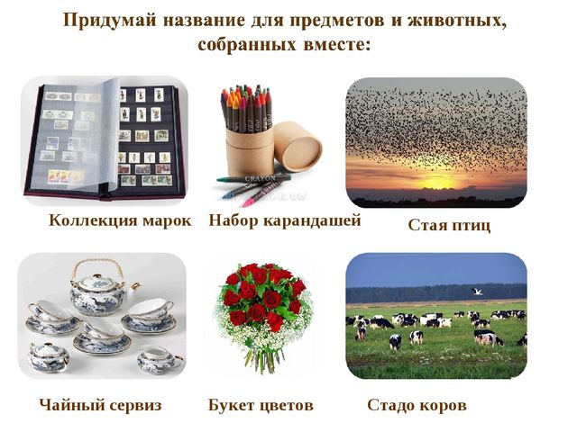 Коллекция марок Набор карандашей Стая птиц Чайный сервиз Букет цветов Стадо к...