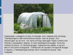 Наверняка, у каждого из вас в огороде, есть парник или теплица. Температура в