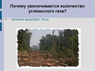 Почему увеличивается количество углекислого газа? - человек вырубает леса