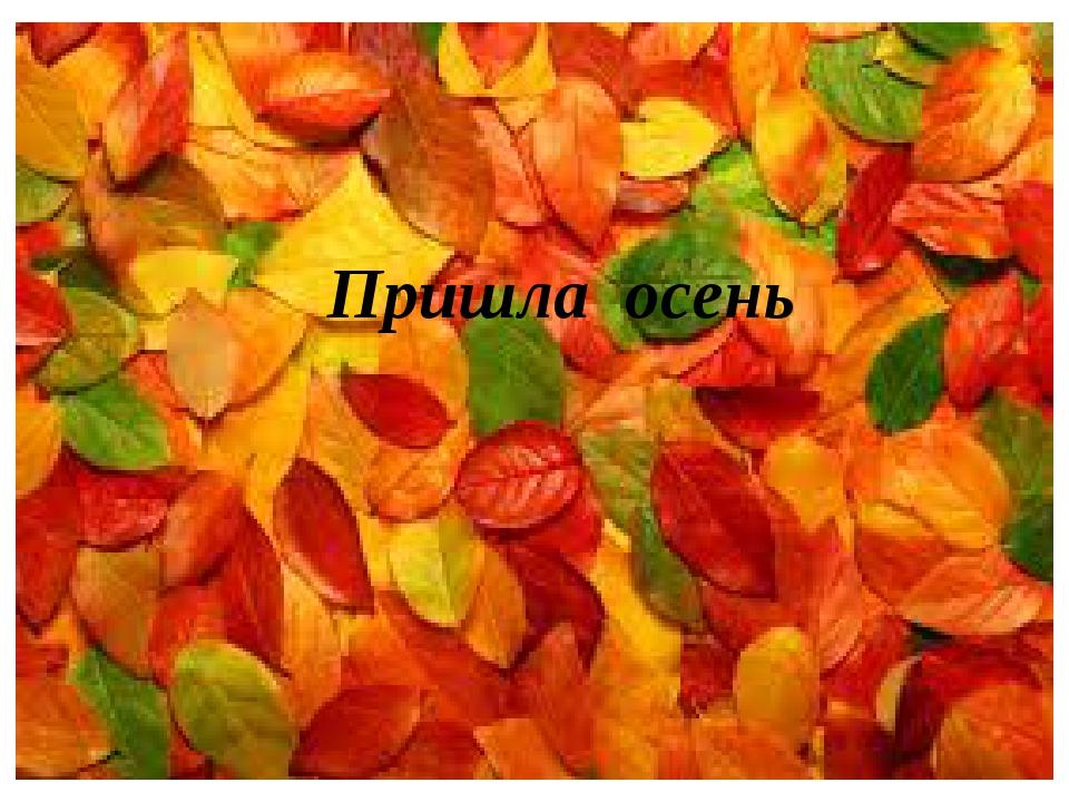 Пришла осень