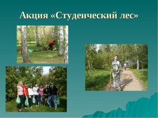 Акция «Студенческий лес»