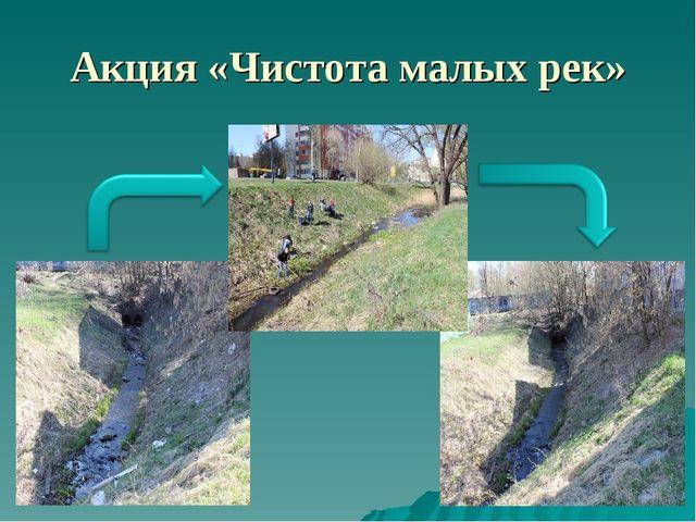 Акция «Чистота малых рек»
