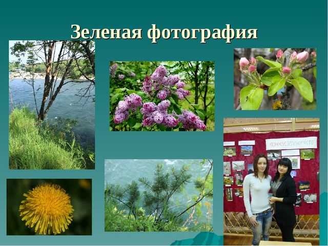 Зеленая фотография