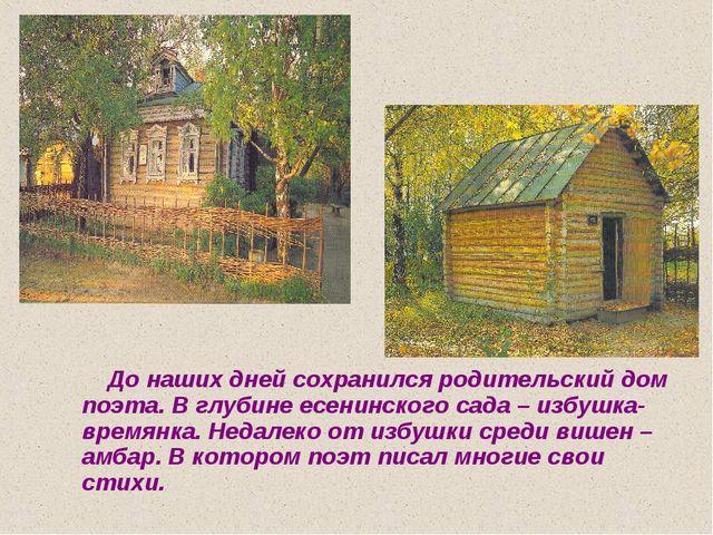 До наших дней сохранился родительский дом поэта. В глубине есенинского сада...