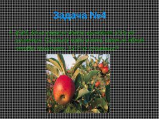 * 2.Из 30 кг свежих яблок выходит 10,5 кг сушеных. Сколько надо взять свежих