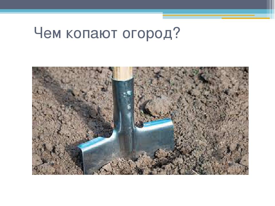 Чем копают огород?