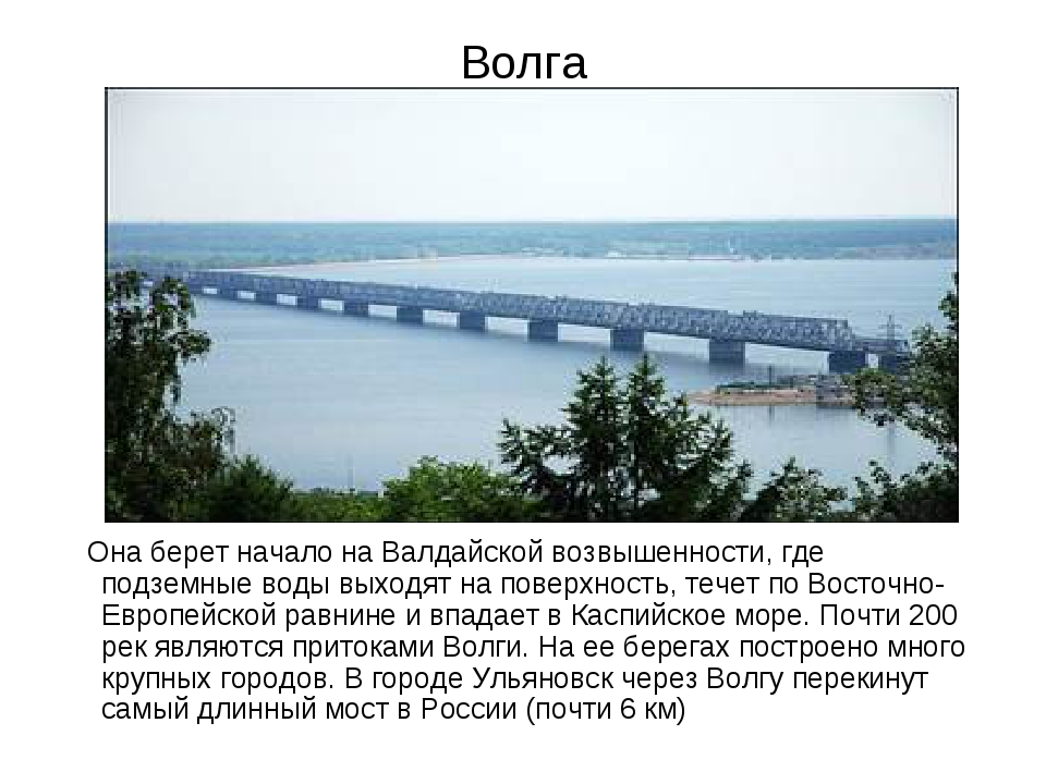 Волга Она берет начало на Валдайской возвышенности, где подземные воды выходя...